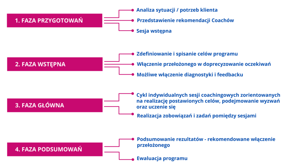 proces mentoringowy struktura